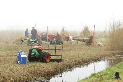 We mogen blij zijn met de rietsnijders in de Weerribben-Wieden, anders zou dit gebied in 10 jaar tijd veranderen in één groot moerasbos. Tegenwoordig zijn er veel machinale hulpmiddelen, maar het is ook nog altijd veel ambachtelijk handwerk.