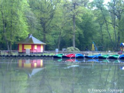 Stein, de roeivijver in Recreatiepark Steinerbos is er al sinds de jaren zestig. Deze tijdloze attractie is nog steeds in gebruik.