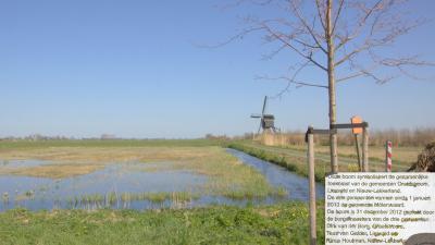 Bij de Broekmolen in Streefkerk is op 31-12-2012 een boom geplant als symbool van de samenvoeging per 1-1-2013 van de gemeenten Graafstroom, Liesveld en Nieuw-Lekkerland. Dit was het driegemeentepunt, vandaar deze locatie. (© Jan Dijkstra, Houten)