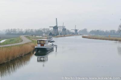Strijkmolens bij Rustenburg, nieuwe situatie 2012, het bosje is verdwenen