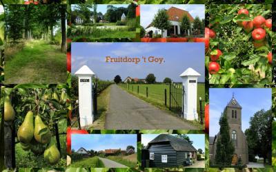 't Goy, collage van dorpsgezichten. 't Goy is nog altijd een fruitkwekersdorp. Dat kan je niet ontgaan als je er doorheen rijdt of wandelt. (© Jan Dijkstra, Houten)