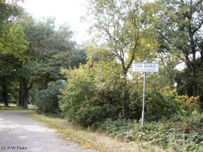 Ter Borg is een piepkleine buurtschap van slechts een handvol panden in de gemeente Westerwolde, t/m 2017 gemeente Vlagtwedde. Zeer de moeite waard om eens te gaan bekijken; het ligt in een prachtig landschap en vrijwel alle panden zijn rijksmonumenten.