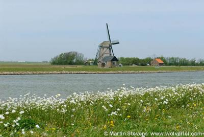 Texel, buurtschap Oost bij het dorp Oosterend, Drijvers Vogelweid De Bol met molen Het Noorden
