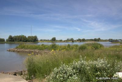 Hier zijn we in de Koekoekswaard bij Tienhoven aan de Lek, aan de oever van de rivier de Lek; ondanks de zeer droge periode van mei-juni 2017 is het er toch nog een plaatje.