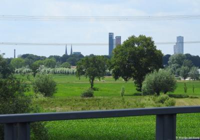 De Tilburgse skyline, gezien vanuit het Enschotse deel van buurtschap en Landgoed Moerenburg. Voor nadere informatie zie het hoofdstuk Beeld.