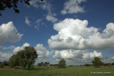 Het Friese landschap bij de buurtschap Tjaard.