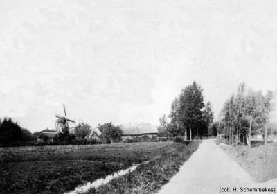 Deze foto uit 1907 van de in 1916 afgebroken Tullse of Biesbossche Molen is volgens het weblog van Frank Magdelyns (www.oudhouten.nl) de enige foto die ooit van deze molen gemaakt is.