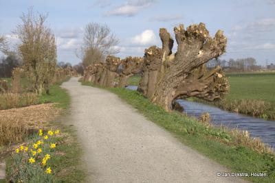 Het pad De Uitweg van Portengen gaat naar natuur- en recreatiegebied De Bosdijk.