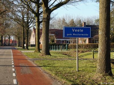 Veele is een buurtschap in de provincie Groningen, in de streek en gemeente Westerwolde. T/m 2017 gemeente Vlagtwedde.