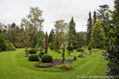Vorden, Pinetum De Belten omvat ca. 1.000 verschillende soorten coniferen. Het pinetum is in principe gratis toegankelijk, maar een vrijwillige bijdrage voor het onderhoud van het pinetum wordt wel gewaardeerd.