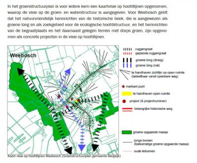 Dit is het groenstructuurplan voor de dorpskern van Weebosch, zoals weergegeven in het bestemmingsplan.