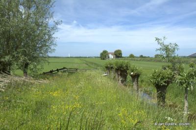 Of de tijd heeft stil gestaan daar in Weijland... Heel in de verte zien we Piet Potlood, de watertoren in het dorp Meije.