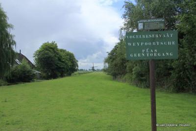 Als je in het W van buurtschap Weijpoort bij de Put van Broekhoven, kennelijk ook wel de Weypoortsche Plas genoemd, de polder in kijkt, zie je in de verte de Weijpoortse Molen