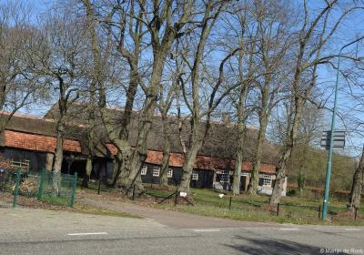 Nog een rijksmonumentaal pareltje in buurtschap Westelbeers is de fraaie 18e-eeuwse langgevelboerderij, met schaapskooi aan de voorkant, wolfdak gedekt door riet en pannen, vensters met 25-ruitsschuiframen en luikjes, op Voldijnseweg 18.