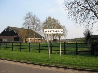 Het dorp Westenesch ligt formeel binnen de bebouwde kom van de stad Emmen, en heeft daarom - komend vanuit de stadskern - een wit i.p.v. een blauw plaatsnaambord.