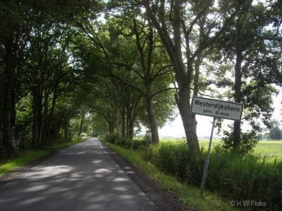 Westerdijkshorn is een voormalig dorp, thans buurtschap in de provincie Groningen, gemeente Het Hogeland. T/m 2018 gemeente Bedum.