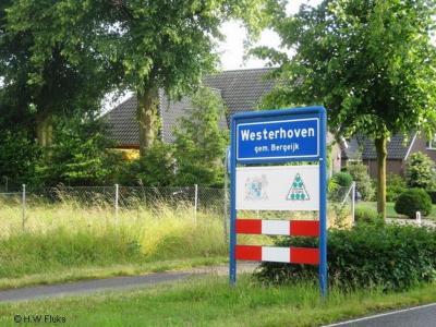 Westerhoven is een dorp in de provincie Noord-Brabant, in de regio Zuidoost-Brabant, en daarbinnen in de streek Kempen, gemeente Bergeijk. Het was een zelfstandige gemeente t/m 1996.