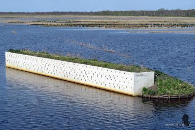 In de recent gerealiseerde waterberging bij Wetering-Oost is een - inmiddels goed gebruikte - oeverzwaluwenwand gerealiseerd. (© www.afanja.nl)