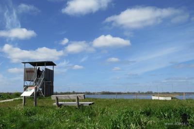 Vanuit vogelkijkhut de Twitterhut bij Wetering-Oost kun je de vogels in het waterbergingsgebied alhier goed bekijken zonder ze te storen. Wel een verrekijker meenemen natuurlijk.