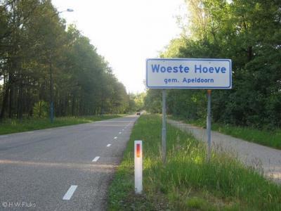 Woeste Hoeve is een buurtschap in de provincie Gelderland, in de streek Veluwe, gemeente Apeldoorn. De buurtschap valt grotendeels onder het dorp Hoenderloo, deels onder het dorp Beekbergen.