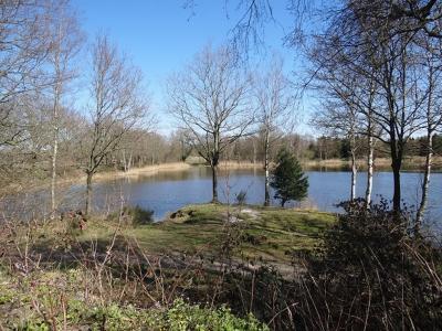Het Bolhuisgat bij Yde-De Punt is een voormalige zandafgraving en is tegenwoordig een meertje, waar heel veel over te vertellen valt. Zie daarvoor het hoofdstuk Landschap, natuur en recreatie. (© https://groninganus.wordpress.com/2020/03/31/rondje-yde)