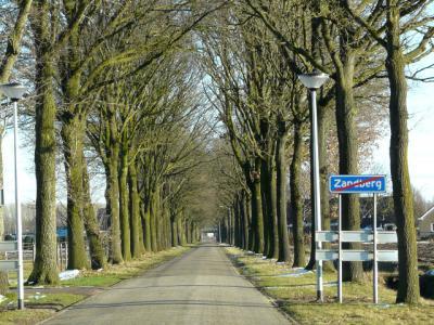 O.a. over de kaarsrechte, boomrijke Schaapsbergweg kun je het dorpje Zandberg weer uit (© H.W. Fluks)
