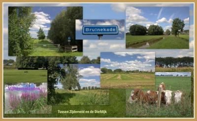 Vanuit Zijderveld kun je een mooie rondwandeling maken over de Bruinekade en Diefdijk en dan via de Kerkweg weer terug. Aan het eind van de Bruinekade ligt een t/m 2018 drieprovincie-, -gemeente- én -kernenpunt. Zie het kopje Ligging. (© Jan Dijkstra)