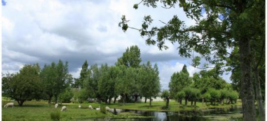 Mooie rustige wereld daar in Diemerbroek.