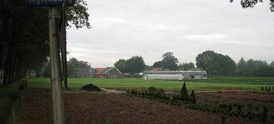 Nijstad, Nijstadweg, met op de achtergrond enkele boerderijen die tot de buurtschap behoren