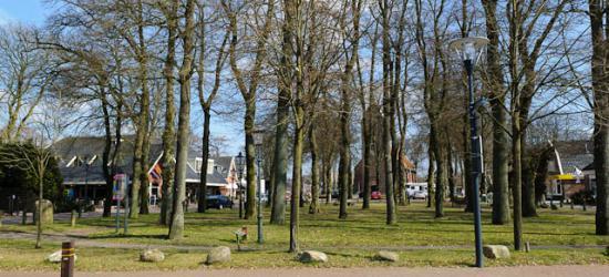 Norg, Drenthe, één van de vijf brinken die het dorp rijk is.