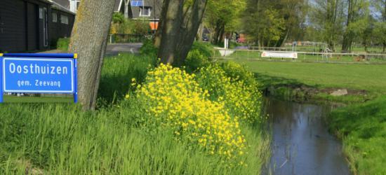 Op een mooie voorjaarsdag in Oosthuizen
