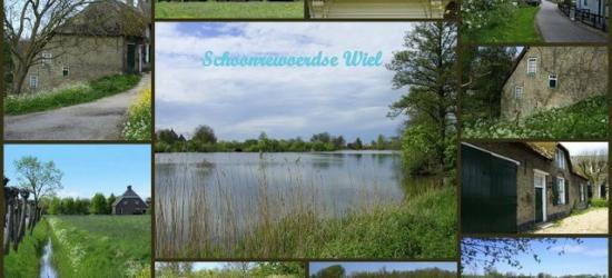 Schoonrewoerd, Schoonrewoerdse Wiel of Wiel van Bassa met omgeving