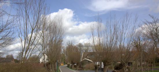 Het is rustig in Breeveld, de weg is daar erg smal en er wonen niet zo veel mensen en dan ook nog verspreid, vandaar.
