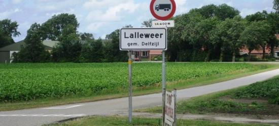 Lalleweer is een buurtschap in de provincie Groningen, in de streek Oldambt, gemeente Delfzijl. T/m 1989 gemeente Termunten.