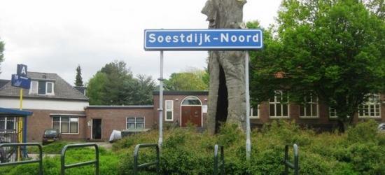 Bestaat er naast de plaatsnaam Soestdijk ook nog een plaatsnaam Soestdijk-Noord?, want dat staat immers op dit 'plaatsnaambord'? Dit duidt echter op het busstation met deze naam in de dorpskern Soest, in de wijk Soestdijk. Zie verder het hoofdstuk Status.