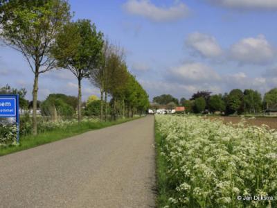 Bruchem is een dorp in de provincie Gelderland, in de streek Bommelerwaard, gemeente Zaltbommel. Het was een zelfstandige gemeente t/m 1817. In 1818 is de naam van de gemeente gewijzigd in gemeente Kerkwijk. In 1999 over naar gemeente Zaltbommel.