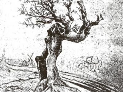 Heesboom, tekening van A.C.F.P. Cuypers uit 1843 van wat volgens hem 'de heesboom van de buurtschap Heesboom' was. Zie verder bij Naam.