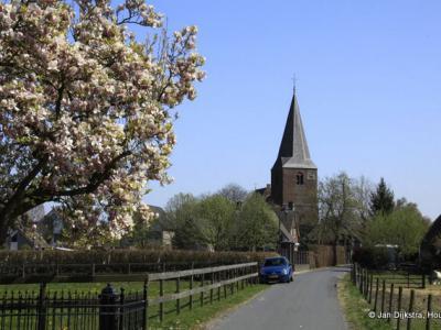 Horssen in het voorjaar