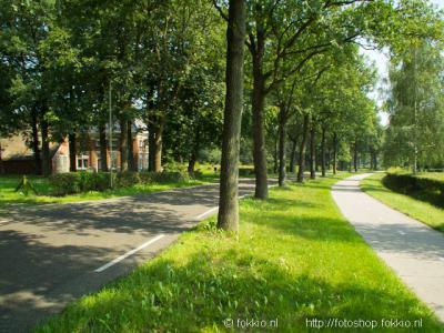 De Horst (buurtschap van Peize)