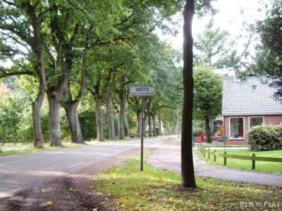 Weite is een buurtschap in de gemeente Westerwolde. T/m 2017 gemeente Vlagtwedde.