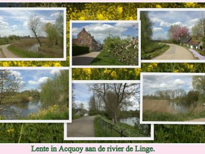 Het is altijd mooi in Akkooi! (zoals je Acquoy hoort uit te spreken). Bijvoorbeeld in de lente, zoals op deze 'ansichtkaart' (© Jan Dijkstra, Houten)
