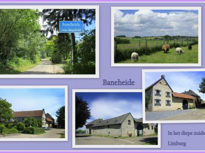 Baneheide, collage van buurtschapsgezichten (© Jan Dijkstra, Houten)