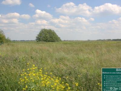 Bilwijk is een buurtschap in de provincie Zuid-Holland, in de streek en gemeente Krimpenerwaard. Oorspronkelijk Haastrecht. Per 1-2-1964 over naar gemeente Stolwijk, in 1985 over naar gemeente Vlist, in 2015 over naar gemeente Krimpenerwaard.
