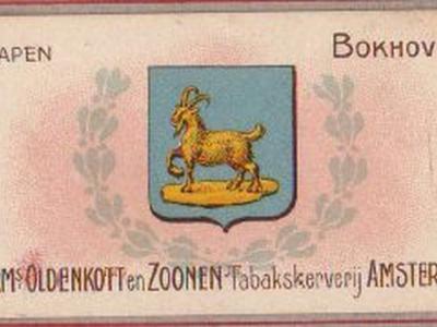 Ook begin 20e eeuw lieten fabrikanten mensen al plaatjes verzamelen als klantenbinder. Tabaksfabrikant Oldenkott deed dat rond 1910 met plaatjes van gemeentewapens (hier van Bokhoven), waar ook speciale albums voor waren waar je ze in kon plakken.