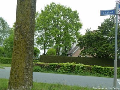 Brakel is een buurtschap in de provincie Noord-Brabant, in de regio Hart van Brabant, gemeente Goirle. T/m 1996 gemeente Alphen en Riel.