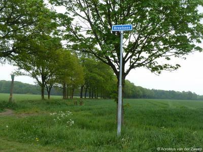 Breehees is een buurtschap in de provincie Noord-Brabant, in de regio Hart van Brabant, gemeente Goirle. T/m 1996 gemeente Hilvarenbeek.