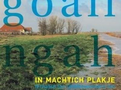 In november 2016 is het prachtige boek 'Goaiïngahuzen, in machtich plakje' verschenen. Geschreven door Auck Peanstra en Anne Peenstra, met foto's van Willem Wilstra. Helaas voor de liefhebbers die het boek nog niet hebben, was het al snel uitverkocht.
