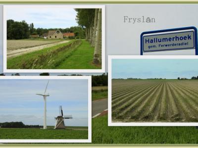 Hallumerhoek, collage van buurtschapsgezichten (© Jan Dijkstra, Houten)