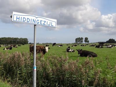 Hiddingezijl is een buurtschap in de provincie Groningen, gem. Het Hogeland. T/m 1989 gem. Baflo. In 1990 over naar gem. Winsum, in 2019 over naar gem. Het Hogeland.(©https://groninganus.wordpress.com/2019/09/14/van-baflo-naar-leens-op-open-monumentendag/