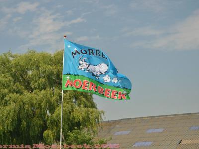 In de volksmond, of als bijnaam, wordt Moerbeek kennelijk Morrebok genoemd, getuige o.a. de naam van de jaarlijkse fietstocht en het logo van de dorpsvlag.